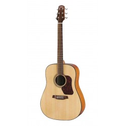 Guitare Folk WALDEN CONCORDA CD550 + Housse