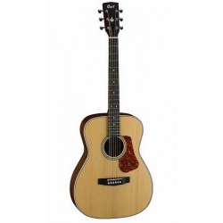 Guitare Folk CORT L100CNS