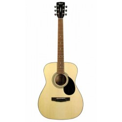 Guitare Folk WALDEN Natura D550